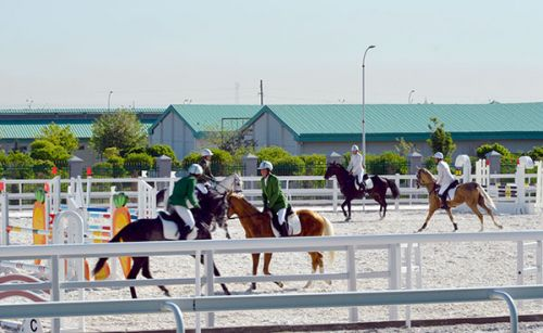 Infrastructure of Domestic Equestrian Sphere to Be Supplemented by International Quarantine Centre