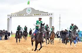 Akhal-Teke Horses Showed Restraint and Sporting Qualities at the Marathon Distance