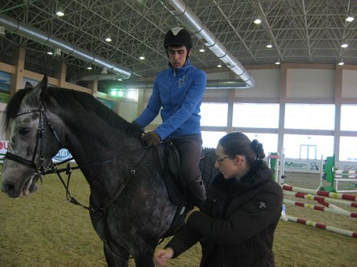 Training Process of Turkmen Show Jumping Masters
