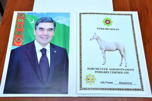 Ruhubelent Horse Is Presented to Galkynysh Group on Behalf of the Head of the State